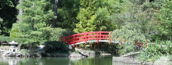 Sarah P. Duke Gardens is one of Must-visit Great Outdoors in Durham.