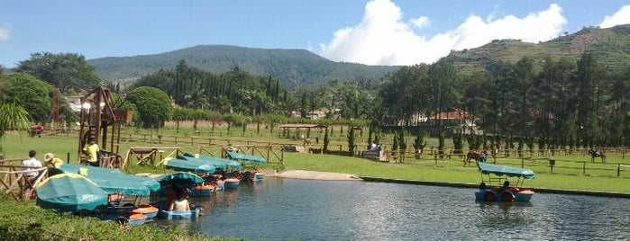 De'Ranch is one of Must-visit Great Outdoors in Bandung.