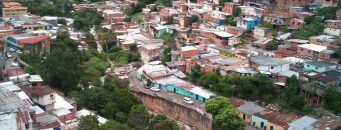 Plazas, Parques, Zoologicos Y Algo Mas