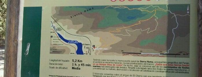 Sendero Haza Del Río is one of Ardales.