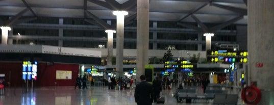Málaga - Costa del Sol Airport (AGP) is one of 101 cosas que ver en Málaga antes de morir.