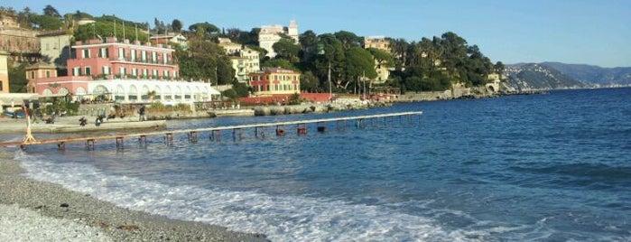 Lungomare di Santa Margherita Ligure is one of Mare.