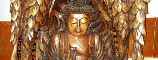 Lotus Yoga is one of my haunts.