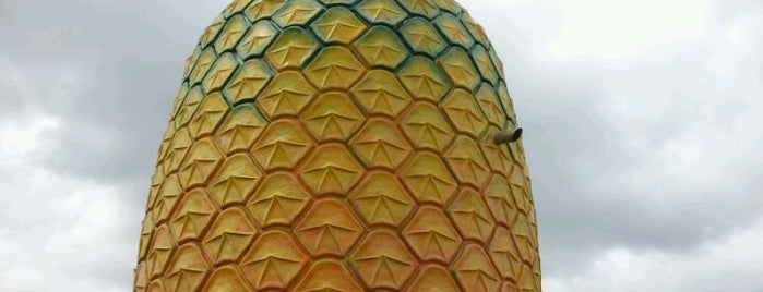 The Big Pineapple is one of Buildings Shaped Like the Food They Serve.