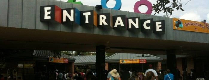 Houston Zoo is one of Houston to-do.