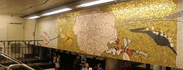 MTA Subway - 77th St (6) is one of Subway Art in NYC.