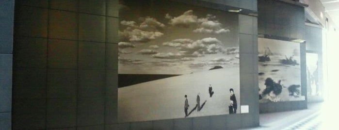 東京都写真美術館 (Tokyo Met. Museum of Photography) is one of Japan must-dos!.