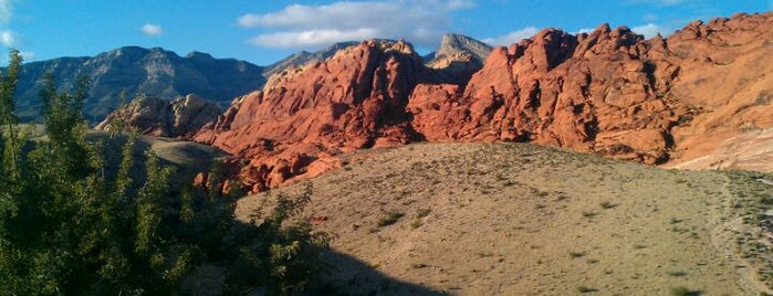 Red Rock Canyon National Conservation Area is one of A local's guide: 48 hours in Las Vegas, NV.