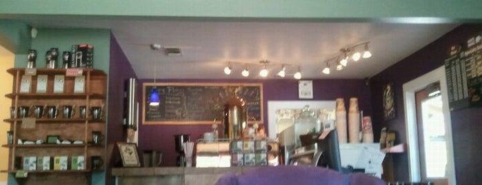 White Rhino Coffee is one of North Texas Caffeine Fix.