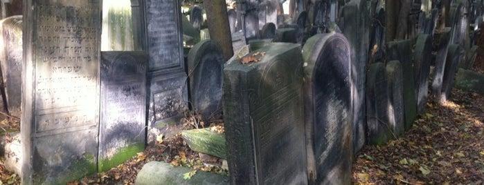 Cmentarz Żydowski / Jewish Cemetery is one of StorefrontSticker #4sqCities: Warsaw.