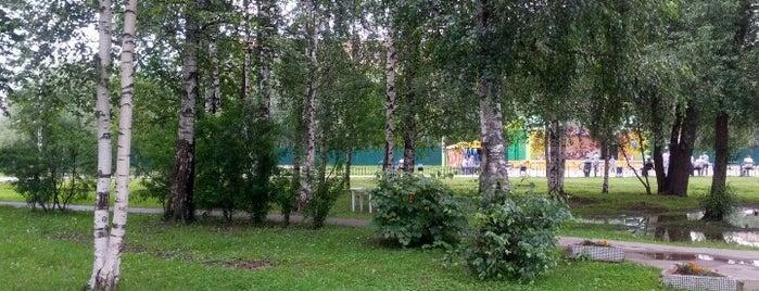 """Городской Парк """"Березовая Роща"""" is one of Лобня."""