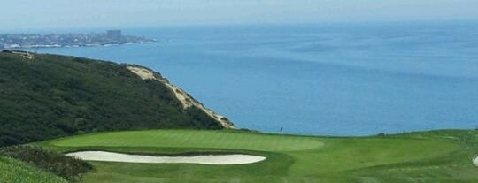 Torrey Pines Golf Course is one of All-time favorites in United States.