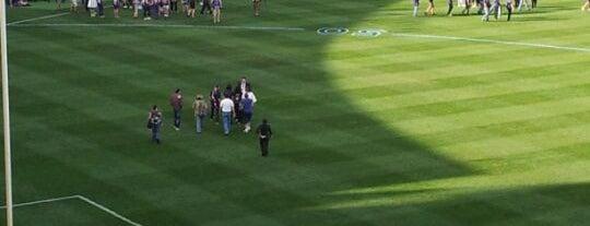 Domain Stadium is one of Best Stadiums.
