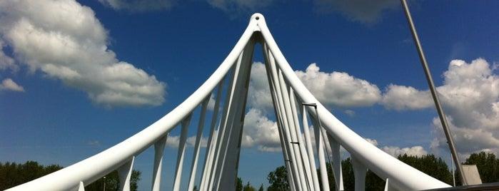 Balijbrug is one of Bridges in the Netherlands.