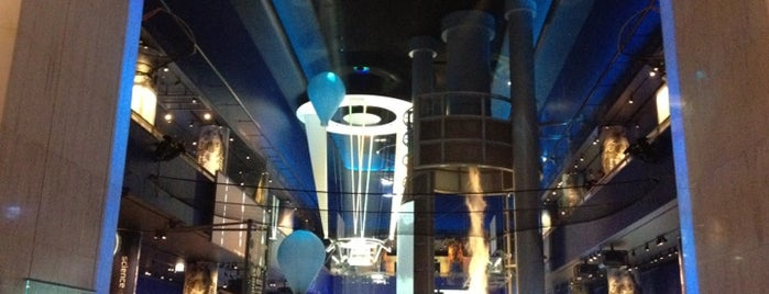 Museum of Science and Industry is one of The Crowe Footsteps.