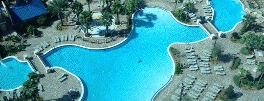 Hyatt Regency Orlando is one of Hotel / Casino.