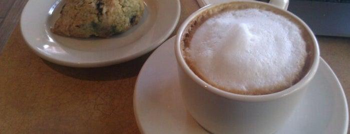 Still Perkin' is one of NOLA Coffee.