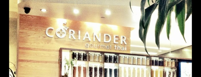 Coriander Gourmet Thai is one of SF: Grub Under $10.