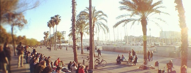 La Barceloneta is one of Barcelona.