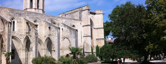 Avignon tatagnon for Piscine stuart mill