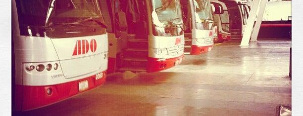 Central de Autobuses de Xalapa (CAXA) is one of Terminales de Autobuses y Aeropuertos.