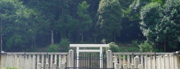 雄略天皇 丹比高鷲原陵 (島泉丸山古墳) is one of 天皇陵.
