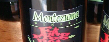 Montezuma Winery is one of New York State Wineries.