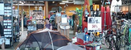 REI is one of * Gr8 Dallas Shopping (non-grocery).