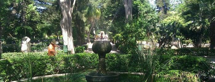 San Anton Gardens is one of Malta Cultural Spots.