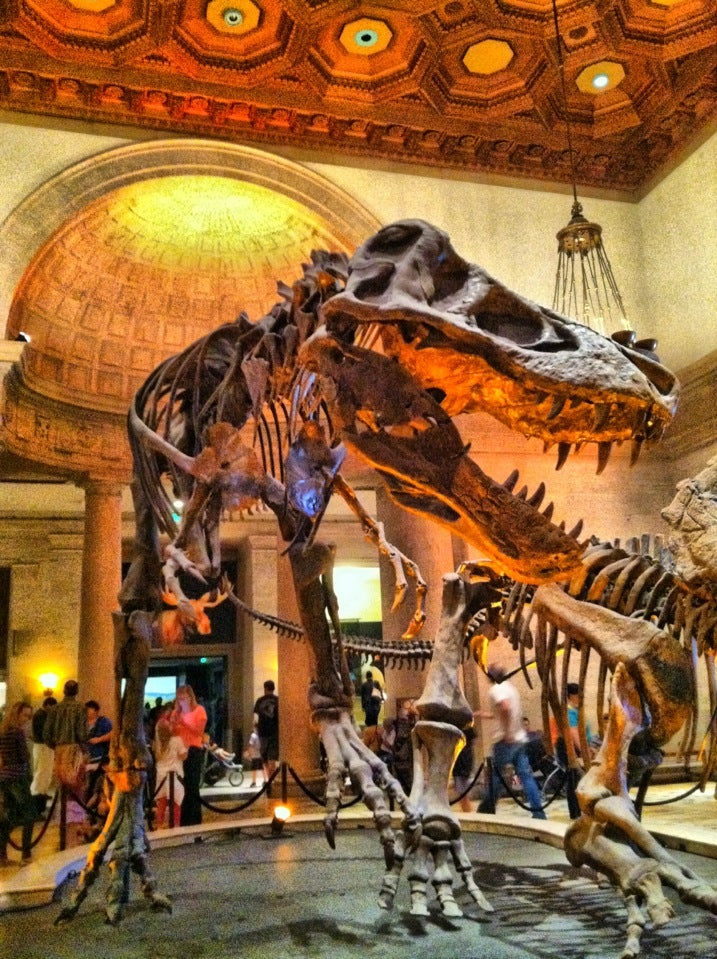 Natural History Museum Los Angeles Halloween