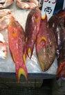 Tai Po Hui Market...