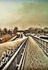 Maynooth Train...