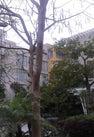 东山湖温泉酒店...