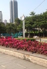 Hing Fong Road...