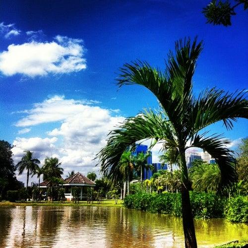 สวนจตุจักร (Chatuchak Park)