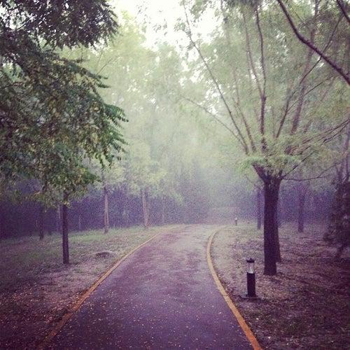 朝阳公园 Chaoyang Park