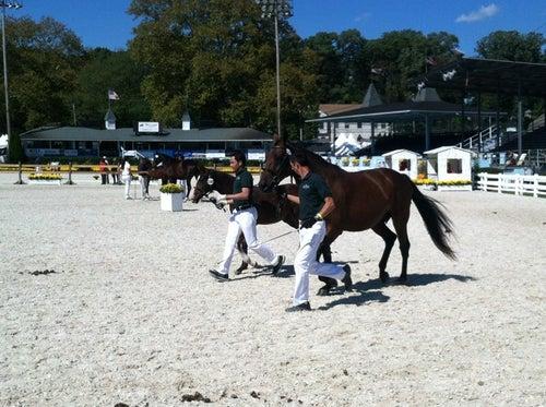 Devon Horse Show Grounds