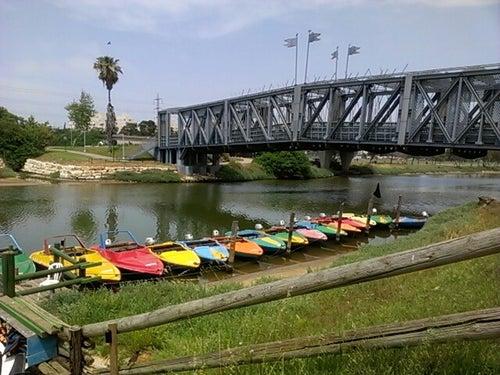Yarkon River (נחל הירקון)