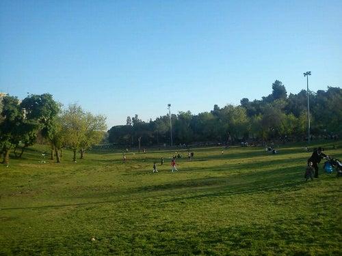 Sacher Park / גן סאקר