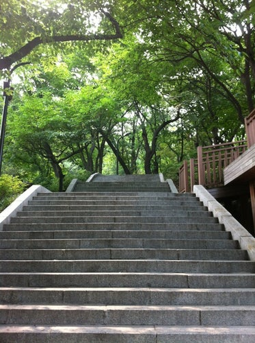 남산 (Namsan Mountain)