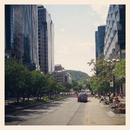 Ville-Marie / Centre-ville de Montréal / Downtown Montreal