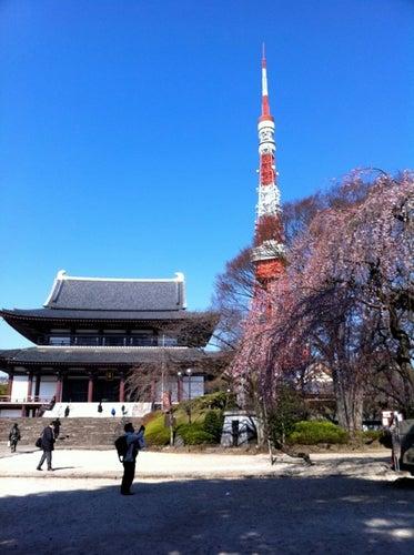 増上寺 (Zojoji Temple)