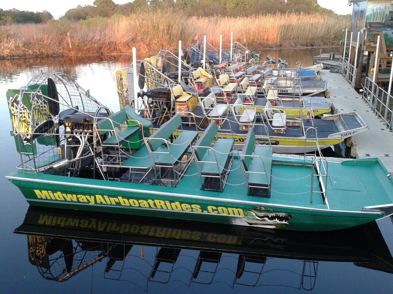 Airboat Rides at MIDWAY,airboat rides,airboat rides & tours,airboat rides near orlando,airboating,all ages,central florida everglades airboat tour,good for groups,hold a baby alligator,wildlife & river ride