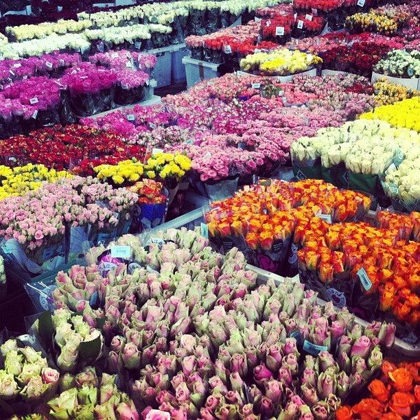 Цветы оптом москва блэк баккара