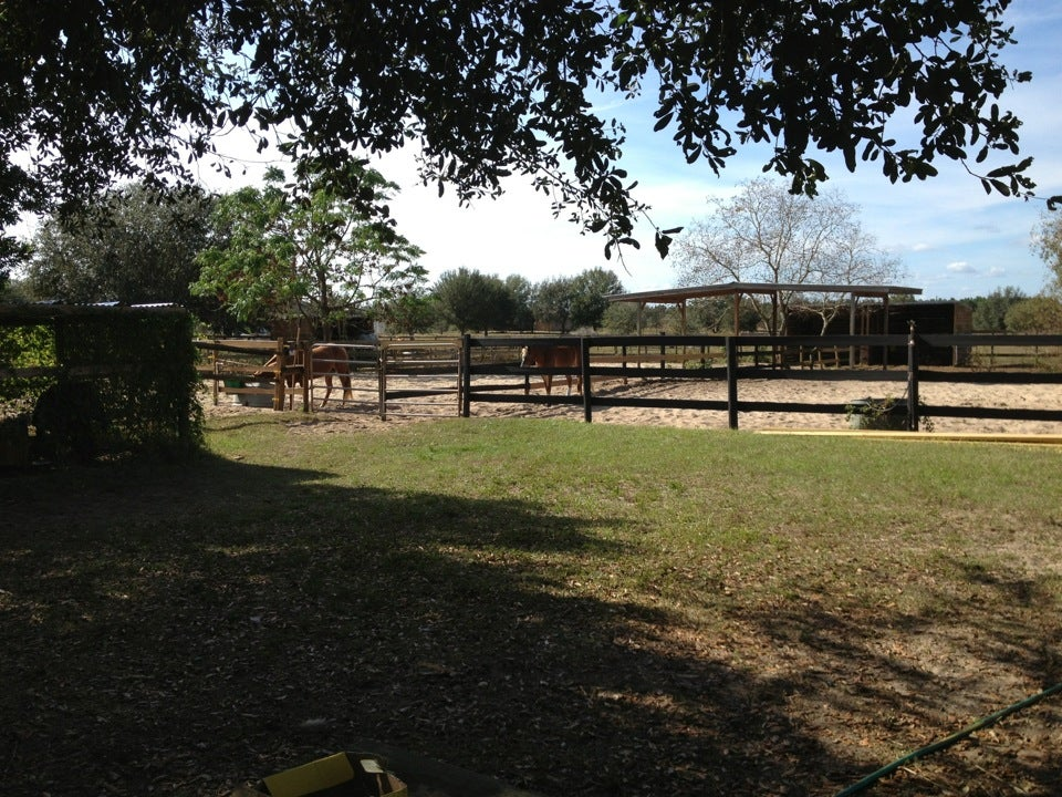 Southern Cross Stables,
