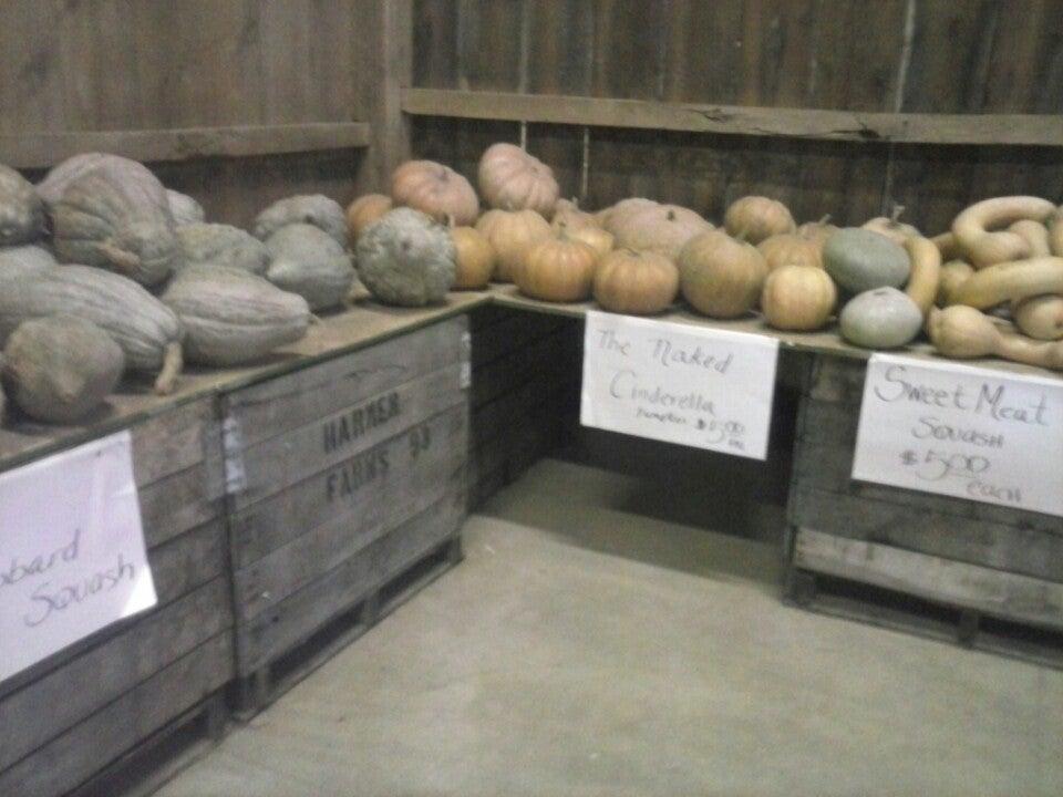 ADAMS FARM MARKET,awesome fresh fruits & veggies