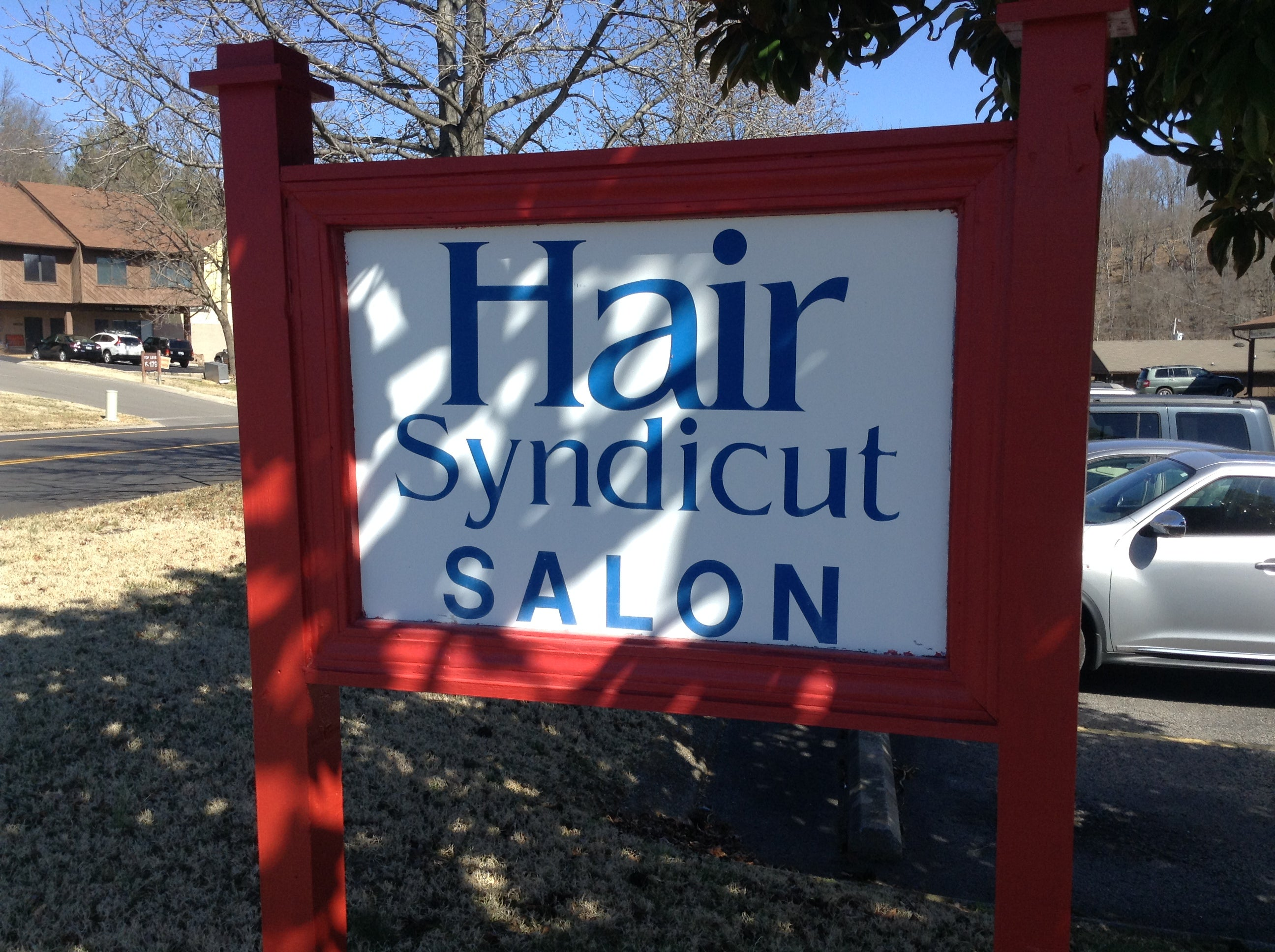 Hair Syndicut,