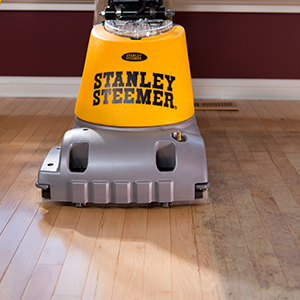 Stanley Steemer,