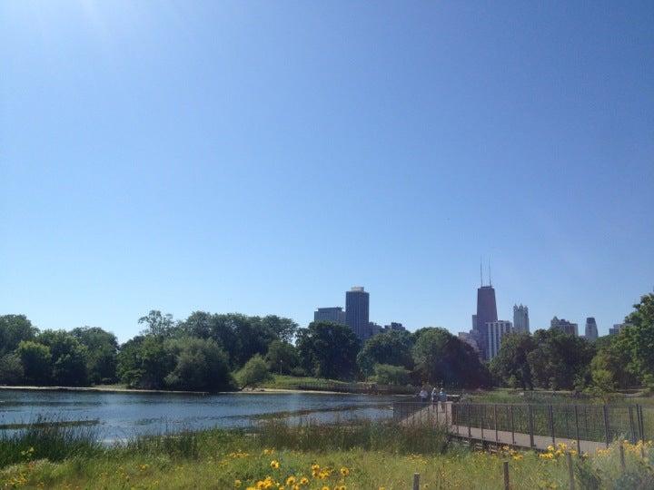 Edzo's Lincoln Park,