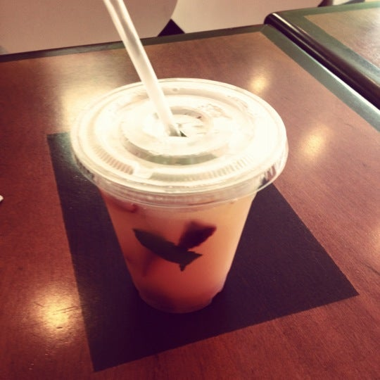 Cartoozi Cafe & Squeeze,